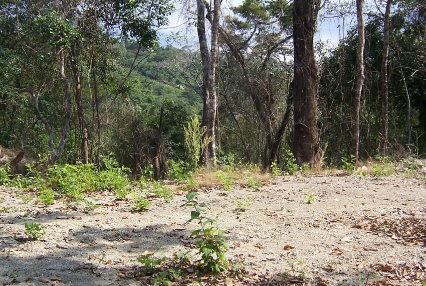 Lot farm for sale playa hermosa costa rica 12