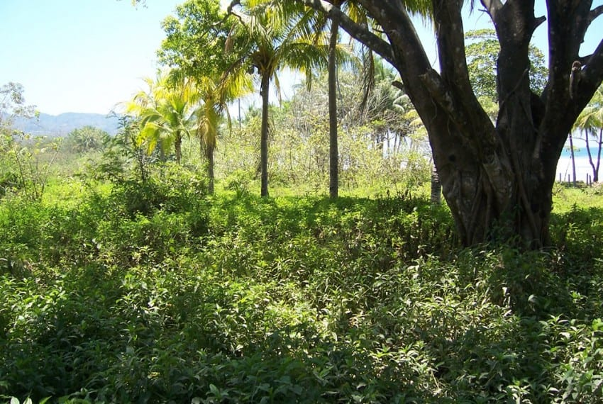 nicoya peninsula beach front lot for sale 2