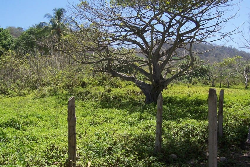 nicoya peninsula beach front lot for sale 6